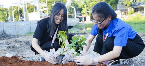 Sinh viên ĐH Văn Lang xây dựng cảnh quan cạnh Bờ kênh Rạch Lăng