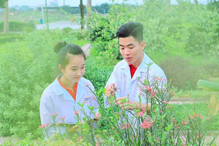 Vườn Dược trong khuôn viên ĐH Thành Đô